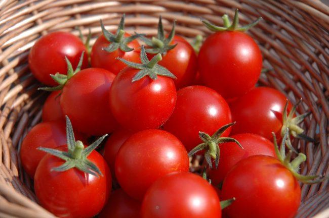 omelete-de-espinafre-e-tomates-dr-juliano-pimentel-3