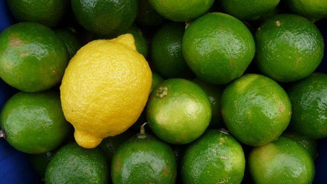 frutas-para-emagrecer-dr-juliano-pimentel-8
