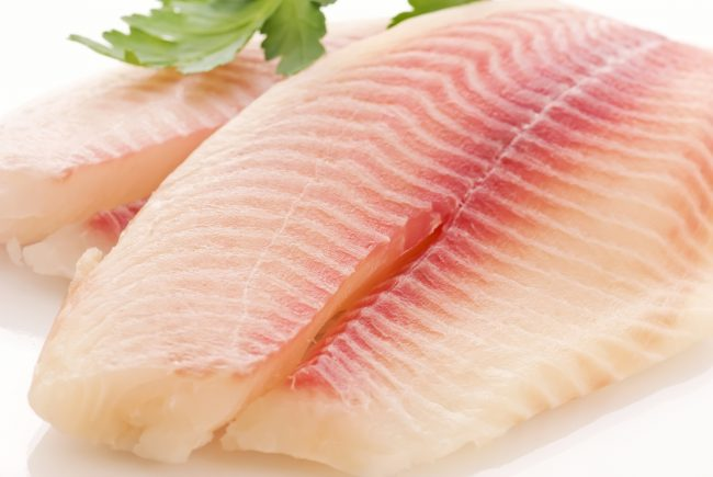 file-peixe1