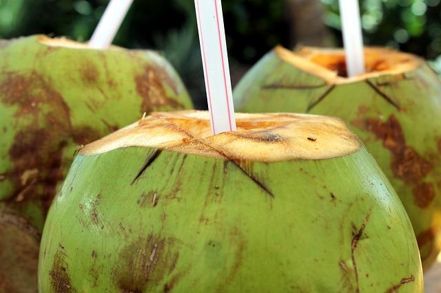 Água de coco benefícios para evitar cãibras