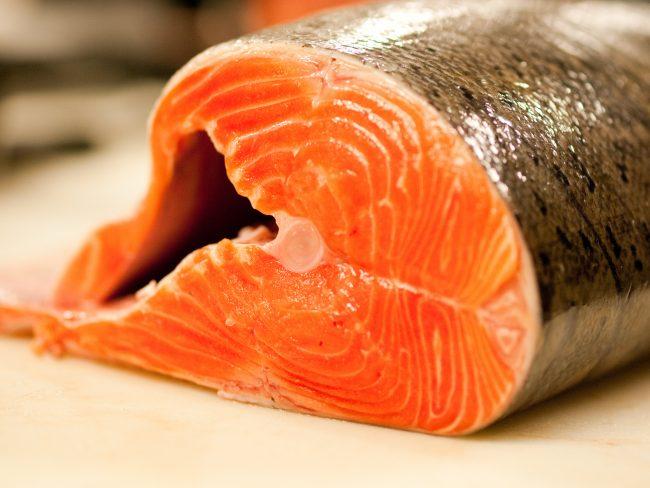 Resultado de imagem para salmão