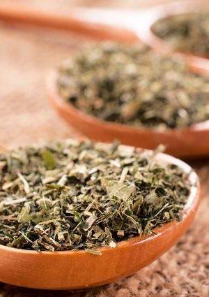 Chá de Orégano. Imagem: (Divulgação)