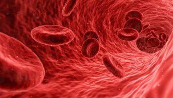 Hepatite C: Quais São as Causas, Sintomas e Tratamentos