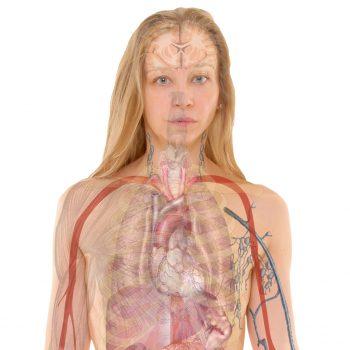 Desintoxicar O Fígado: Os Melhores Alimentos Desintoxicantes. Imagem: (Divulgação)