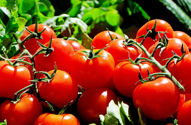 Alimentos que Ajudam a Prevenir o Intestino Preso