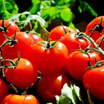 Alimento Orgânico. Imagem: (Divulgação)