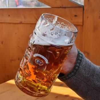 Cerveja Engorda? Imagem: (Divulgação)