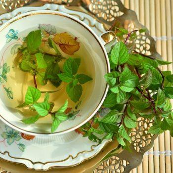 Chá Verde Emagrece. Imagem: (Divulgação)