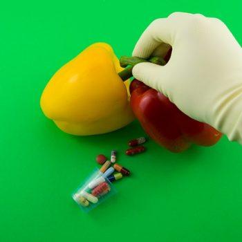 Alimentos Transgênicos. Imagem: (Divulgação)
