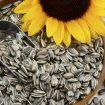 magnesio-semente-de-girassol