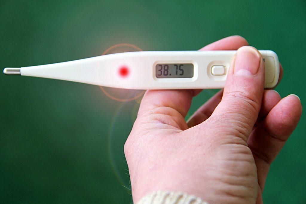 Sintomas de toxoplasmose podem ser confundidos com gripe