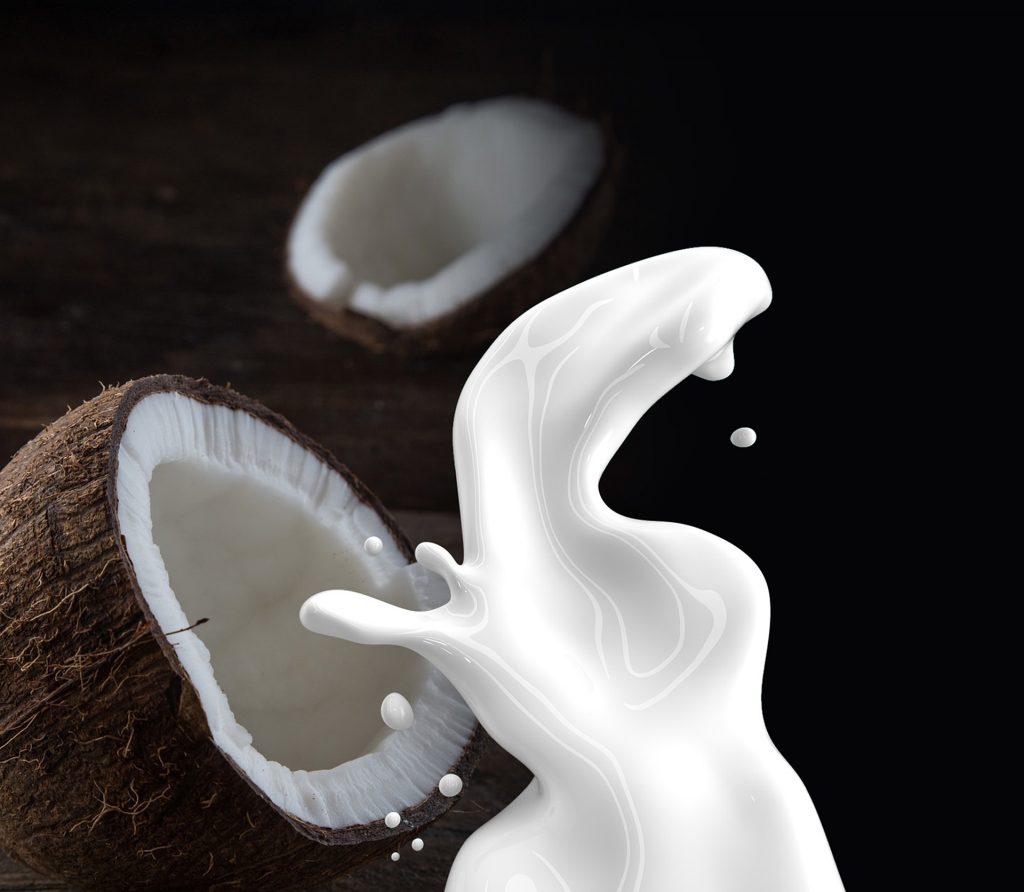 leite de coco é uma substância branca e leitosa extraída da polpa dos cocos maduros.