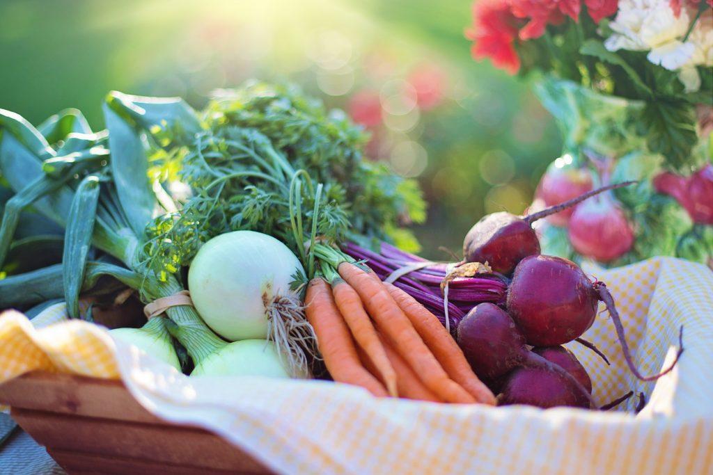 Legumes e Verduras também são alimentos reguladores