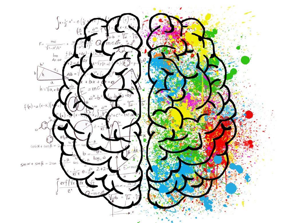 27 curiosidades sobre o cérebro