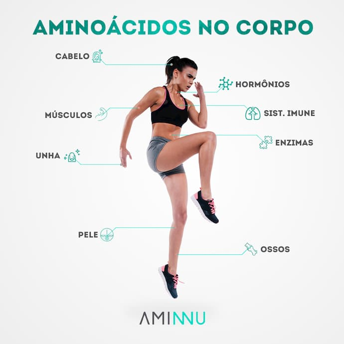 beneficio do aminoacido no corpo