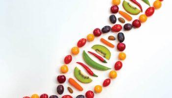 alimentação e cancer