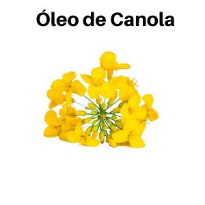 oleo de canola