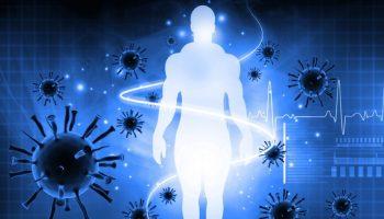sistema imunologico
