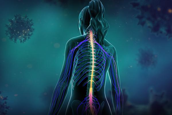 esclerose múltipla afeta principalmente mulheres.